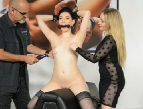 BDSM Toys with Aria Alexander