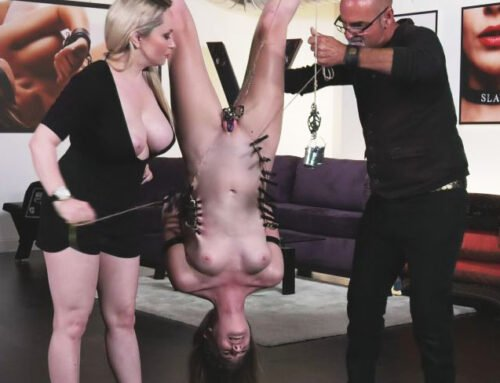 Everything BDSM with Ashley Lane